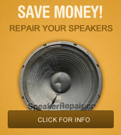 Save Money! Repair Your Speakers